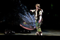 How to Train Your Dragon Live Show
